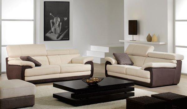 Very Homey Contemporary Living Room Design