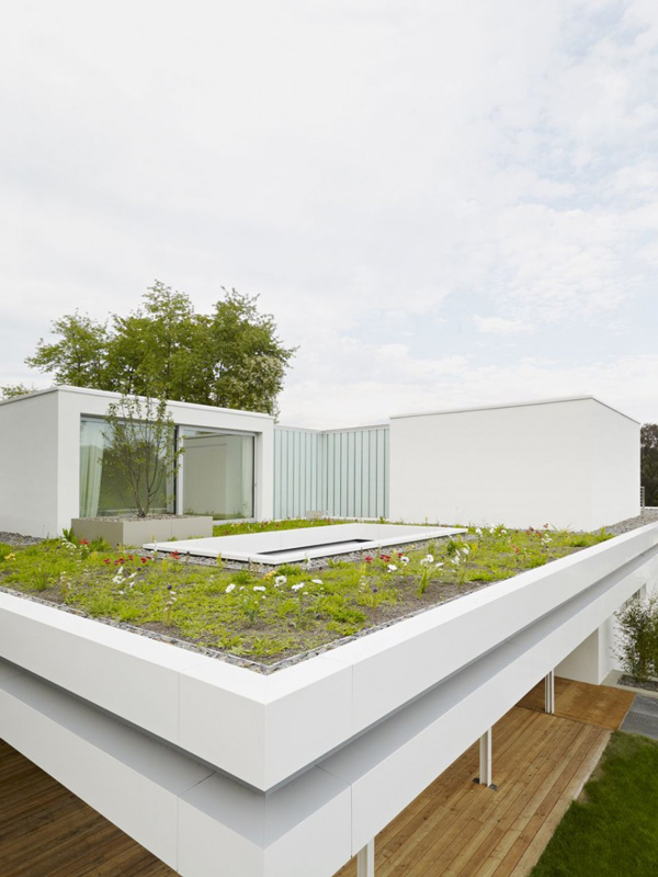The distinct and simple rooftop garden of house s home for House roof garden design