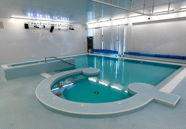 Well-Spirited Indoor Pool Design