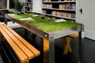 Get a Rural Picnic in an Urban Home with PicNYC Table