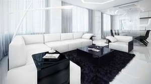 contemporary black and white living rooms
