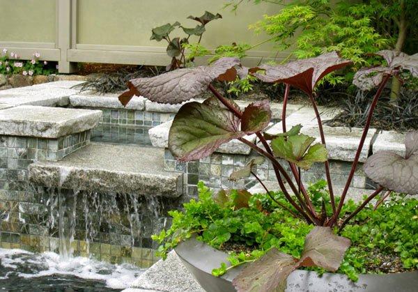 courtyard water