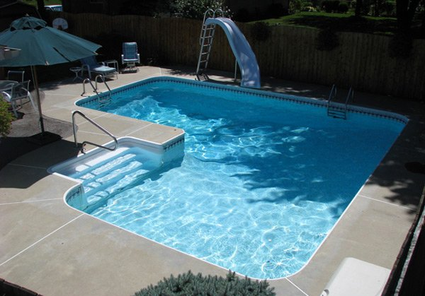 Swimming Pool Design Shape Shaped Pools