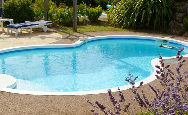 Swimming Pool Design Shape 20 Figure 8 Shaped Swimming Pool Designs Home Design Lover