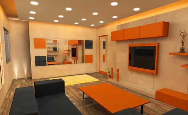 orange television case