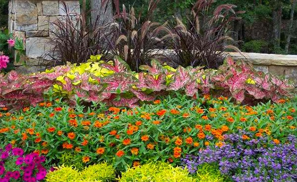 landscaping ideas for flower beds  home design lover, Beautiful flower