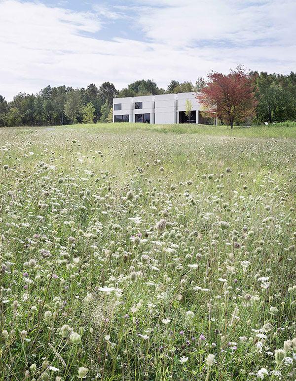 HHF Architects & Ai Weiwei