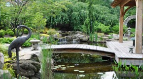 15 Pond Landscaping Designs for Your Garden