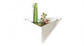 Origami Wall Planter: An Amazing Way to Grow Plants