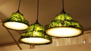 seaweed light