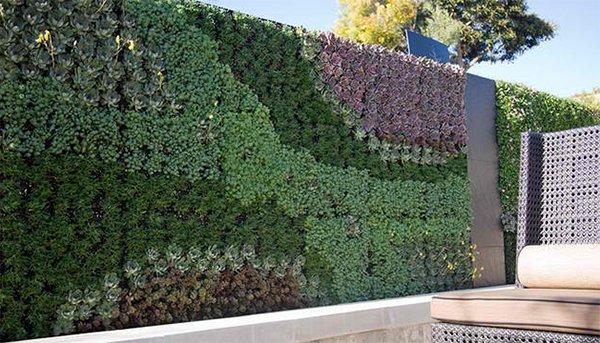 wall plant art