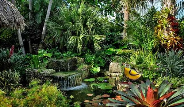 10 Easy Steps To Make Your Dream Tropical Garden A Reality
