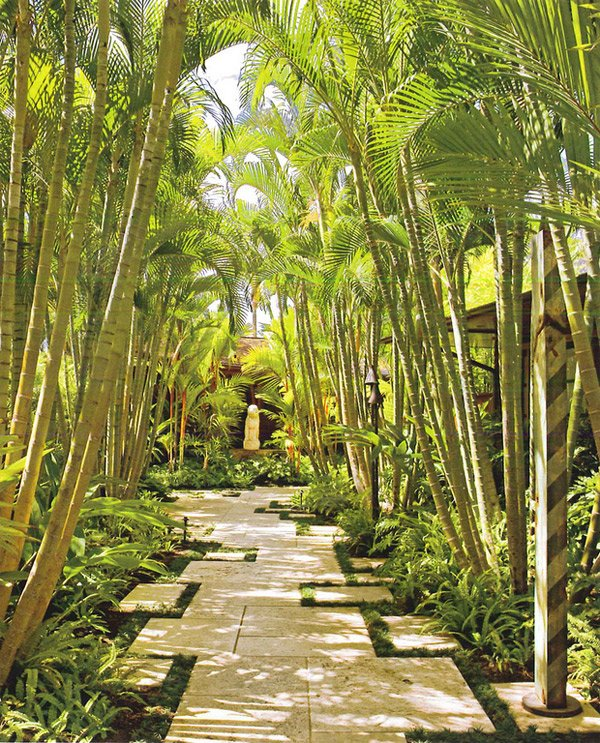 Tropical landscape designs that brings coolness to your for Garden design with palms
