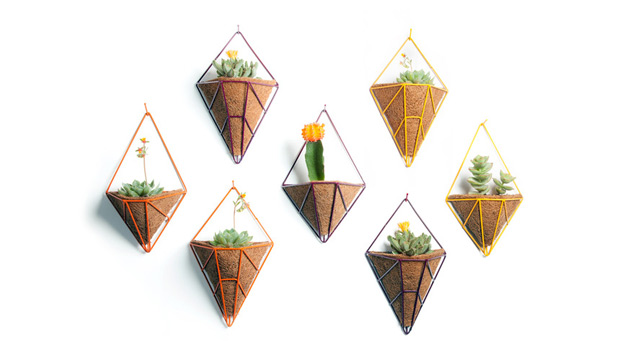 Hedge: lovely geometric planters for urban gardens