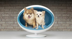 Padpod: Sleek Elevated Luxury Beds for Pets