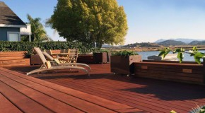 Before and After Photos of a Modern Water-Side Landscape Remodel in California