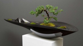 Kasokudo Bonsai Modern Planter Showcases a Fusion of Style and Function
