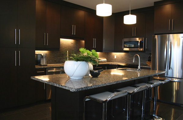 Contemporary Kitchens With Dark Cabinets 22 beautiful kitchen colors with dark cabinets | home design lover