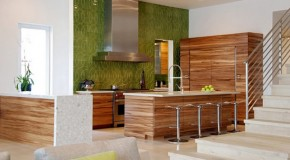 20 Contemporary Eco-Friendly Kitchen Designs