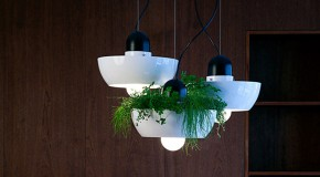 Well Light: A Gorgeous Lighting and Planter in One