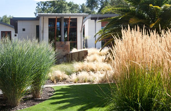 Landscaping Ideas Using Grasses : Landscaping ideas using grass plants home design lover
