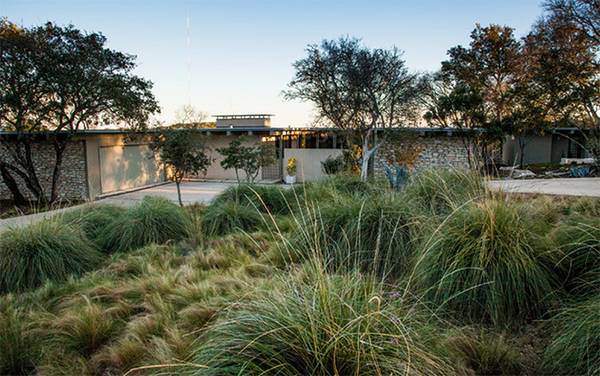 midcentury modern now email save photo mexican feather grass robert leeper landscapes - Mid Century Modern Landscaping