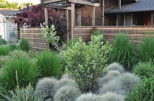 20 landscaping ideas using grass plants home design lover for Ornamental grass landscape ideas