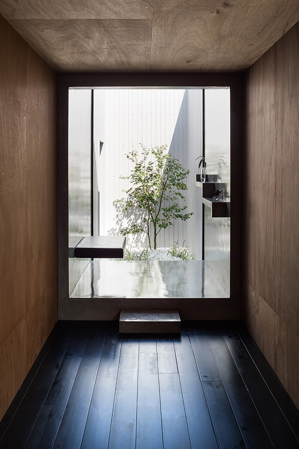 bath plant white