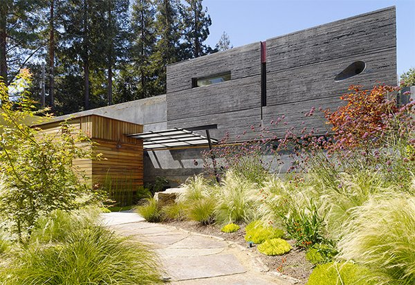 landscaping with grass
