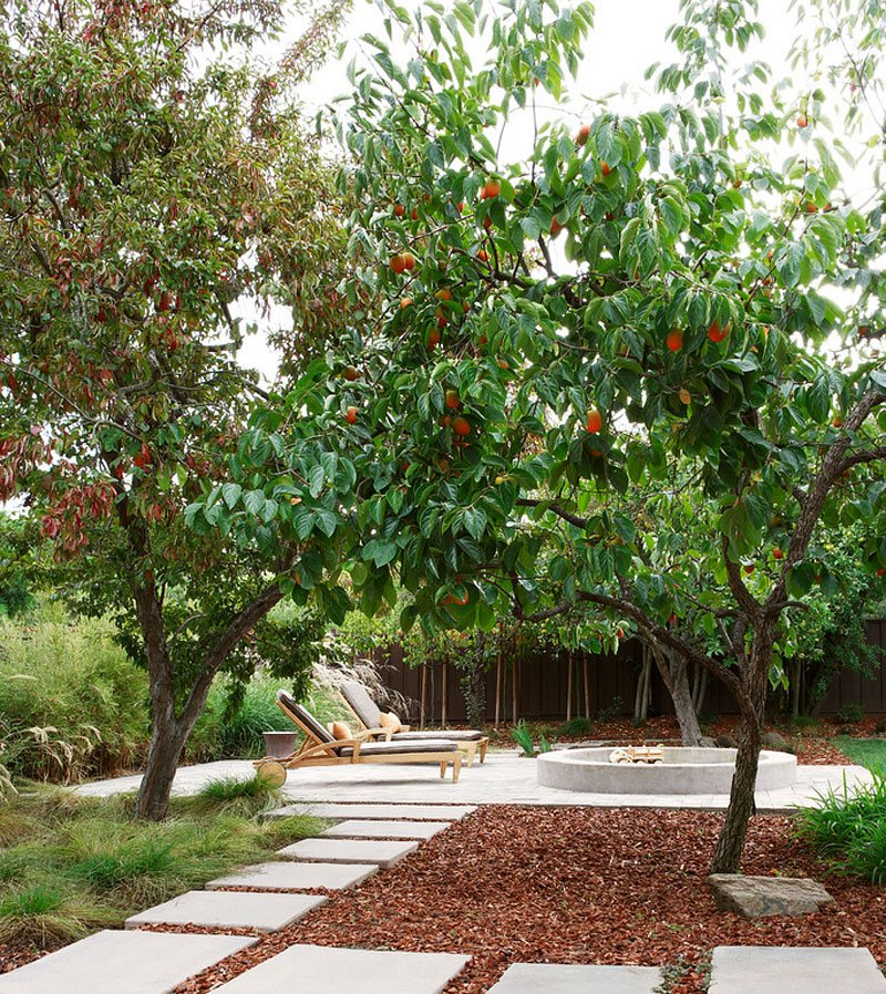 22 tree shade landscaping ideas for your yards home for Tree landscaping ideas