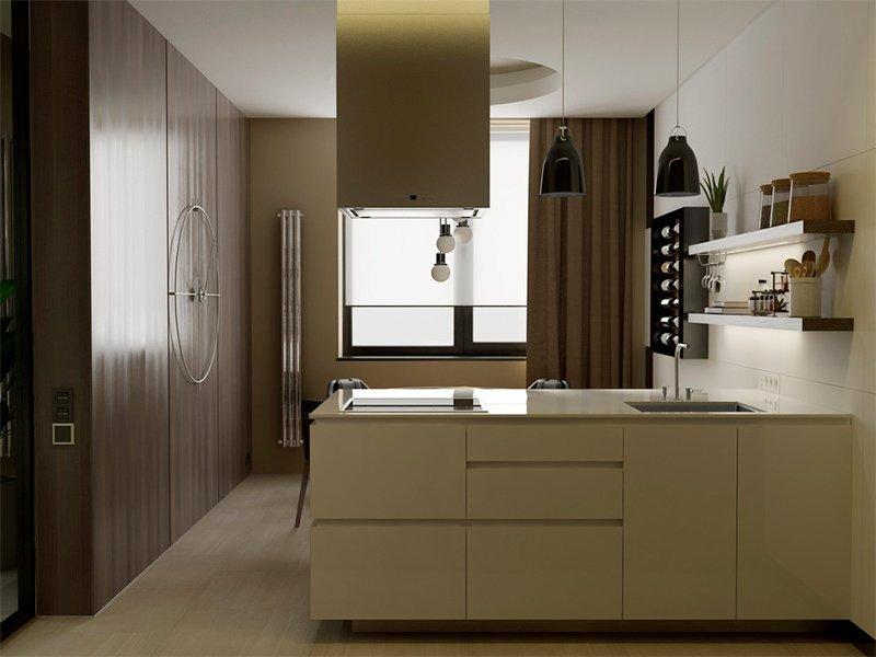 Ultra Modern Kitchens