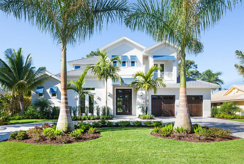Landscape Ideas For Florida House likewise Christmas Palm together with Gardening Sri Lanka Landscaping as well Front Yard Landscape as well Artificial Flowering Plants cherry Bromeliad p 245. on palm tree landscape design ideas