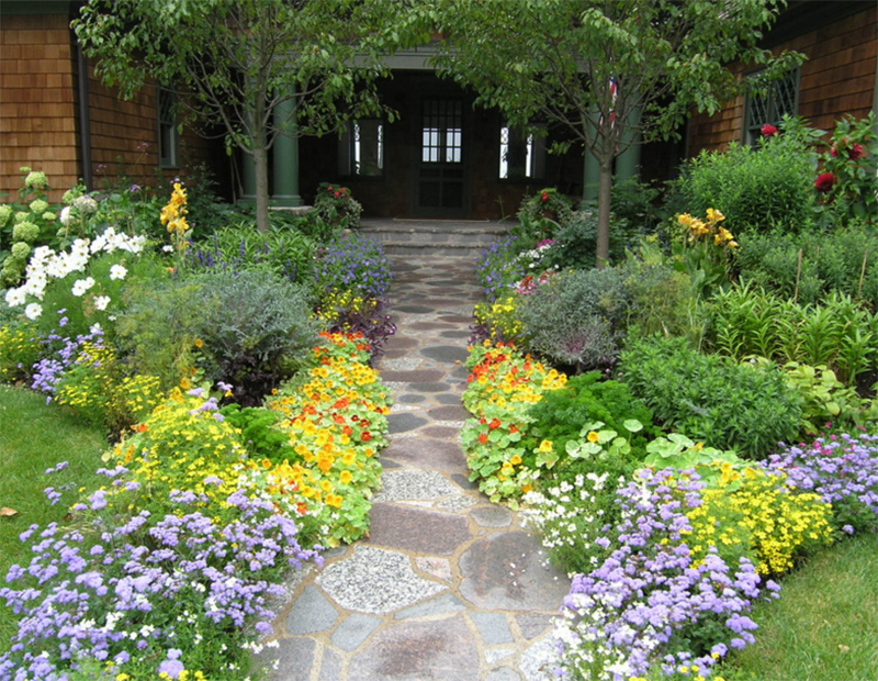 colorful flowers pathway
