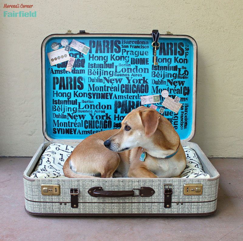 Turn A Suitcase Into A No-Sew DIY Dog Bed
