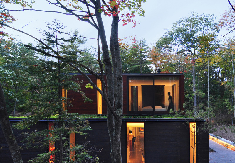 Pleated House green roof