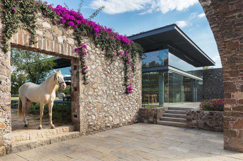 Hacienda El Barreno Visitors Pavilion horse