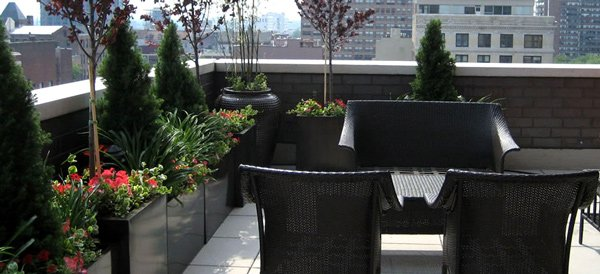 roof garden landscapes