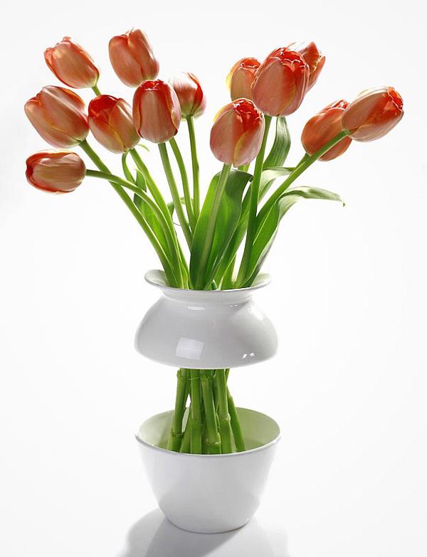 Bikini Vases