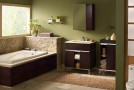 a green bathroom designs