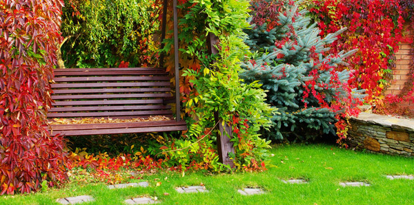 tips in landscaping a small garden