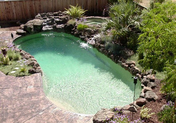 20 Exquisite Kidney Shaped Pool Designs Home Design Lover