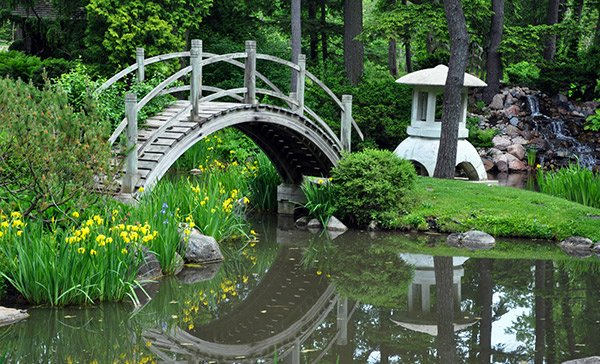 Beau Japanese Garden Bridges