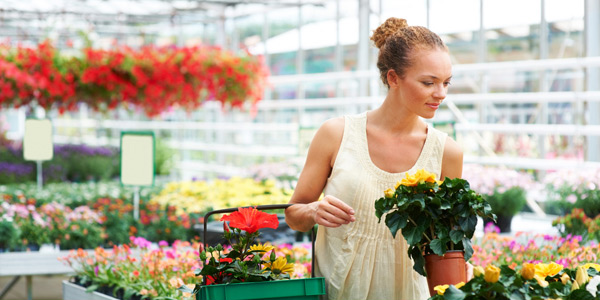 Inspect plants regularly