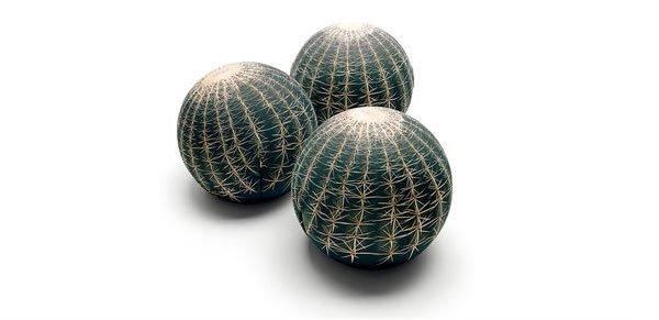 cactus poufs