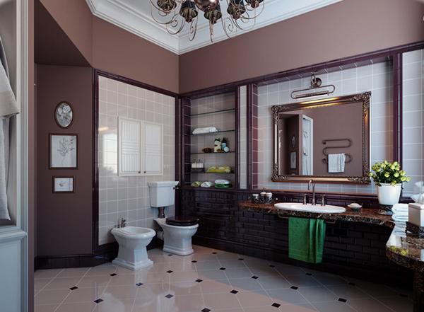 elegant bathroom color