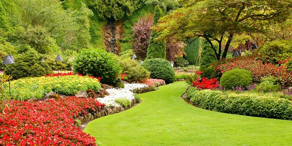 Landscape Design Ideas For A Creative Home Garden Home Design Lover