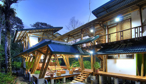 bamboo exterior design