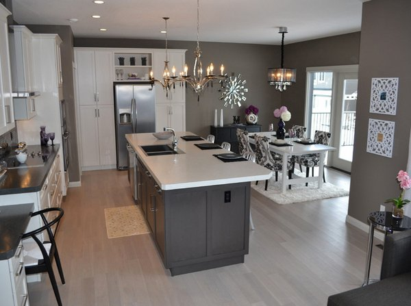Astounding Grey Kitchen Designs Home Design Lover - Light grey kitchen designs