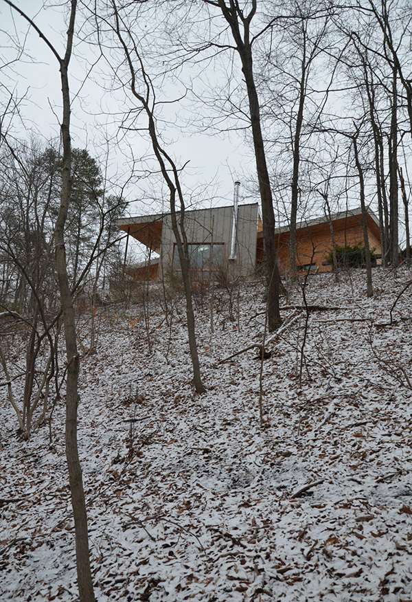 forest exterior