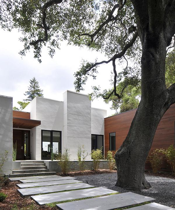 Ana Williamson Architect